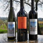 Starlite Vineyards
