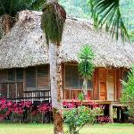 Foto de Bocawina Rainforest Resort & Adventures