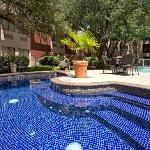 Crowne Plaza North Dallas-Addison Foto