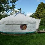The Orchard Yurt