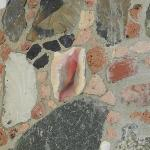 Close up of stone & sea shell wall in master bath
