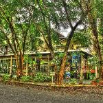 Photo of Parrotfish Lodge Backpackers Resort Port Douglas