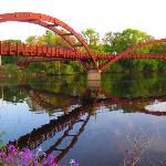 The Tridge