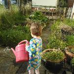 "My daughter ""helping"" in the garden"