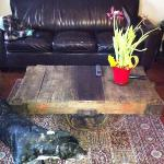 my antique coffee table