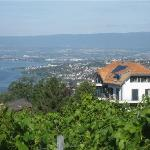 Villa Lavaux Boutique B&B