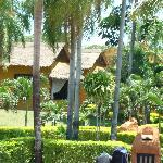 Hotel Rio Selva Resort Santa Cruzの写真