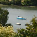  A view over Dittisham to the River
