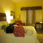 Foto de Hilton Garden Inn Devens Common