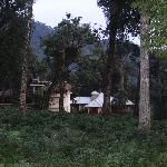 Pulimoottil deep forest resort, Munnar