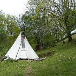  Tipi