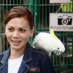  Animal Park @ Melka ... My frend posing with the parrot ...