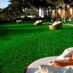The tranquil Ocean-Front Lawn!