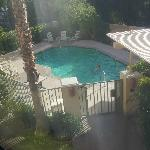  Pool from our window