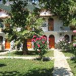 Photo of Olympos Yavuz Hotel