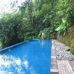 Infinity lap pool valley jungle