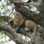 Extreme Nature Tours and Travel Day Tours