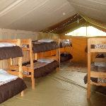 Punda Milias Nakuru Camp