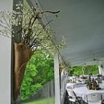The Veranda at Mulberry House