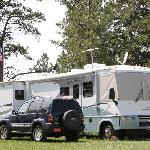 RV Hookups & Tent sites in the trees