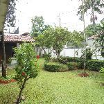 Garden at Bangka B&B