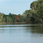 down the daly river