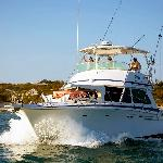 Panoply Sport Fishing & Charters