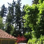 A Cascade View Bed and Breakfast Foto