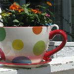 Coffee Cup Flower Pot
