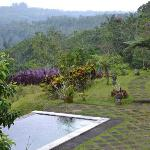 Photo of Bagus Agro Pelaga