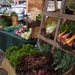 Mount Desert Island Farmers Markets