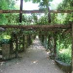 Arbor June 2012