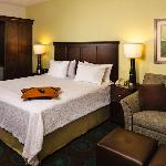 ‪Hampton Inn and Suites Houston Medical Center - Reliant Park‬