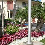 BEST WESTERN Lamplighter Inn & Suites at SDSU resmi