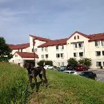 Foto de Red Roof Inn Roanoke - Troutville