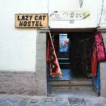 Lazy Cat Hostel