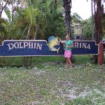 Foto de Dolphin Marina & Cottages
