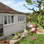 House and apple blossom