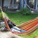  Hammock!