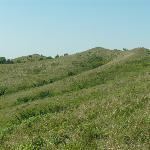 The beautiful architecture of the Loess Hills