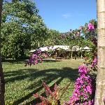 Beautiful Hibiscus Lodge Bed & Breakfast