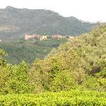 Photo de Vignola B&B