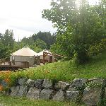  the yurts
