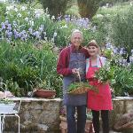 Gathering herbs at Poderi Val Verde