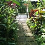  Pathway from the villa
