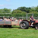 tractor rides