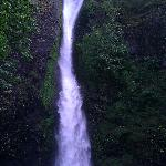 Waterfall @Oneonta Gorge