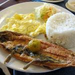  Bangus