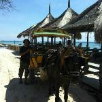 Foto di Coral Beach Bungalows