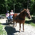Birthday Girl in the Pony Cart with Owner Sande